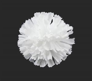 Гвоздика шелк d-10 см белый (1/100)